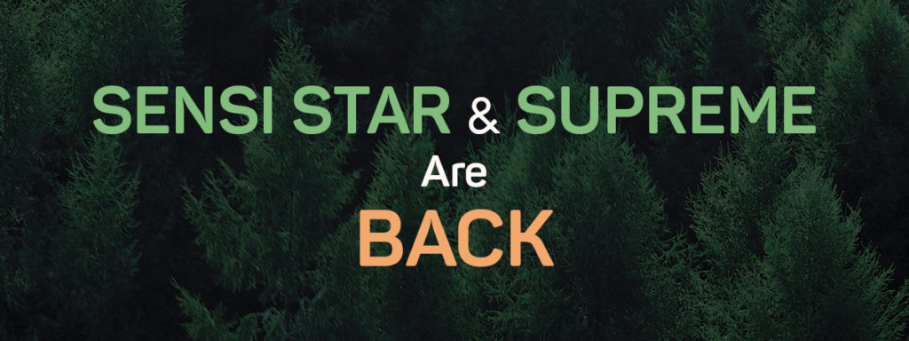Return of Sensi Star & Supreme Formula